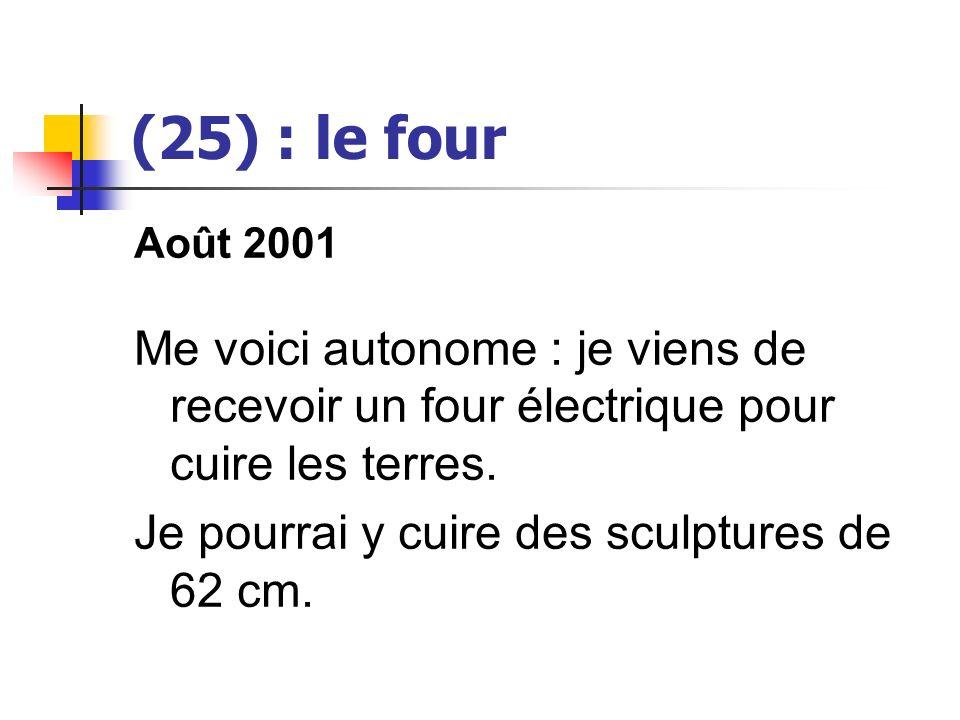 (25) : le four Août 2001 Me voici autonome : je viens de recevoir un four électrique pour cuire les terres. Je pourrai y cuire des sculptures de 62 cm