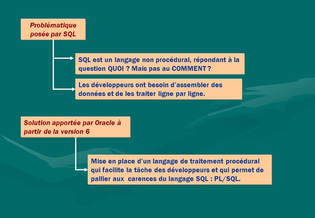 Présentation du langage PL/SQL D Noyau DICTIONNAIRE DONNEES SQL DEVELOPPER DESIGNER Oracle APPLICATION (PGI) PL/SQL