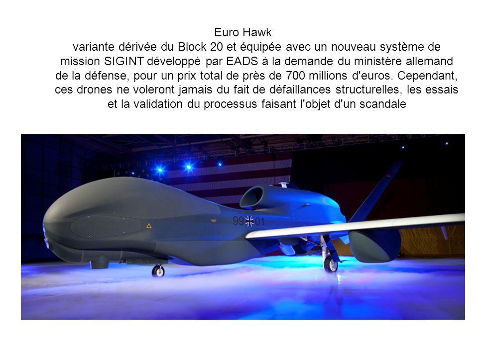 Euro Hawk variante dérivée du Block 20 et équipée avec un nouveau système de mission SIGINT développé par EADS à la demande du ministère allemand de la défense, pour un prix total de près de 700 millions d euros.