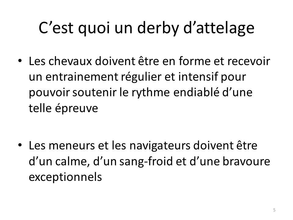 5 Cest quoi un derby dattelage Les chevaux doivent être en forme et recevoir un entrainement régulier et intensif pour pouvoir soutenir le rythme endiablé dune telle épreuve Les meneurs et les navigateurs doivent être dun calme, dun sang-froid et dune bravoure exceptionnels