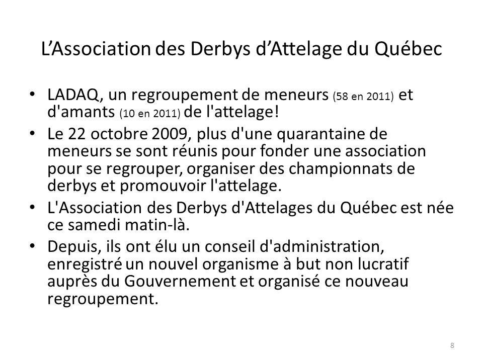 8 LAssociation des Derbys dAttelage du Québec LADAQ, un regroupement de meneurs (58 en 2011) et d amants (10 en 2011) de l attelage.