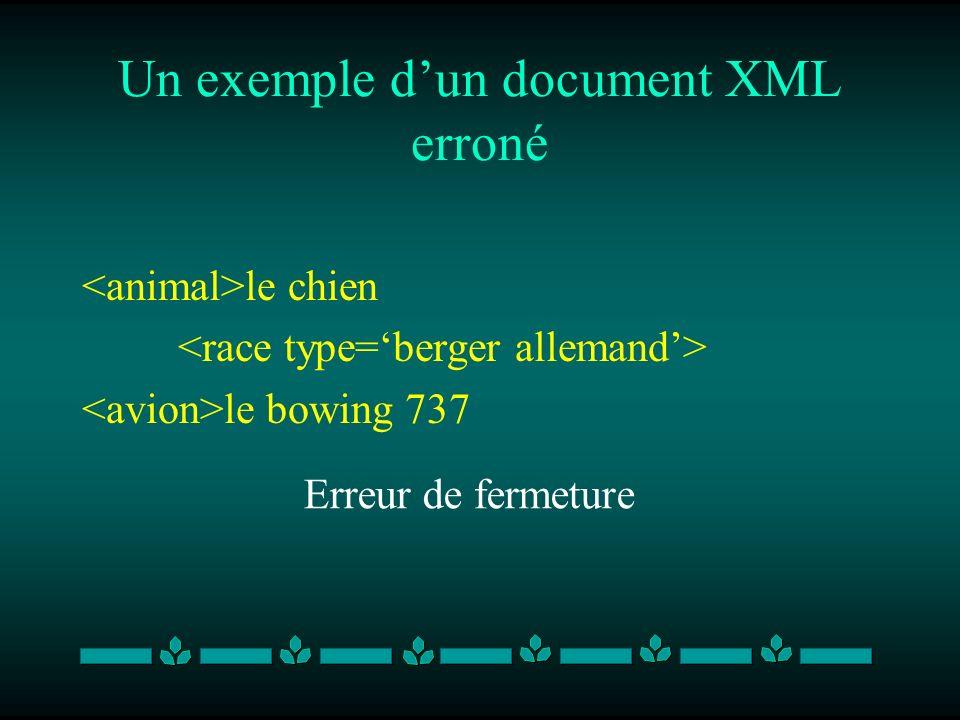 Un exemple dun document XML erroné le chien le bowing 737 Erreur de fermeture