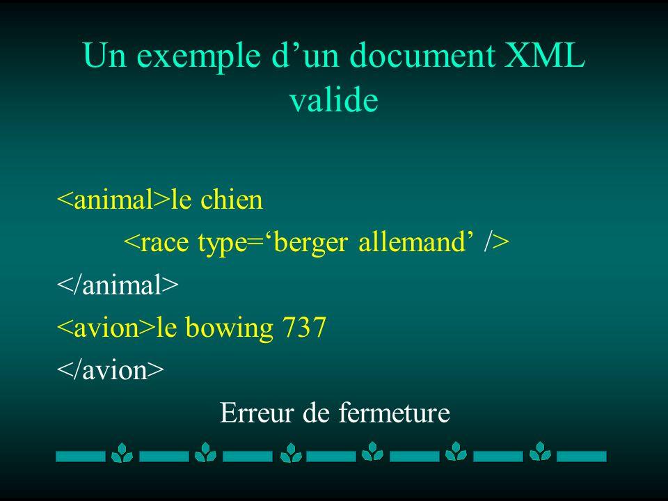 Un exemple dun document XML valide le chien le bowing 737 Erreur de fermeture