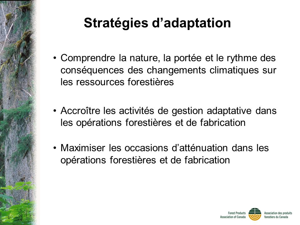 Stratégies dadaptation Comprendre la nature, la portée et le rythme des conséquences des changements climatiques sur les ressources forestières Accroître les activités de gestion adaptative dans les opérations forestières et de fabrication Maximiser les occasions datténuation dans les opérations forestières et de fabrication