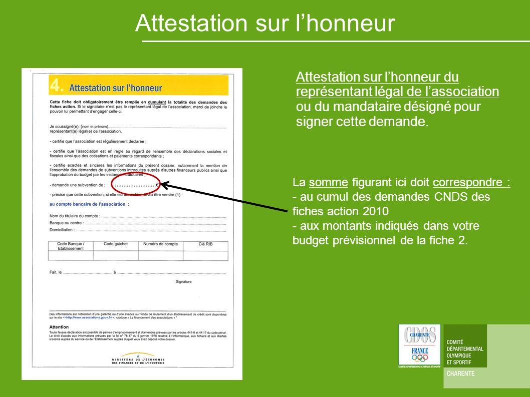 La somme figurant ici doit correspondre : - au cumul des demandes CNDS des fiches action 2010 - aux montants indiqués dans votre budget prévisionnel d