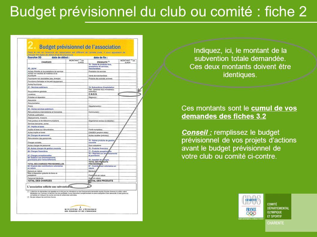 Ces montants sont le cumul de vos demandes des fiches 3.2 Conseil : remplissez le budget prévisionnel de vos projets dactions avant le budget prévisio