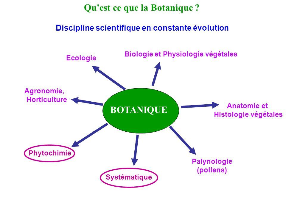 BOTANIQUE Qu'est ce que la Botanique ? Biologie et Physiologie végétales Anatomie et Histologie végétales Palynologie (pollens) Systématique Phytochim