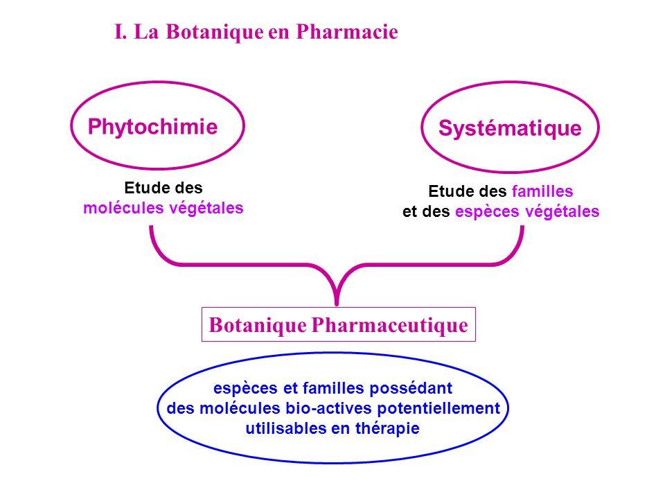 Phytochimie Systématique Etude des molécules végétales Etude des familles et des espèces végétales Botanique Pharmaceutique I. La Botanique en Pharmac