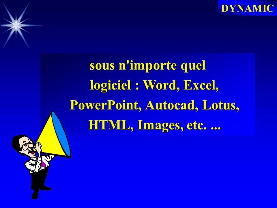 DYNAMIC DYNAMIC PERMET : La La gestion de l ensemble des documents émis et reçus, informatisés ou non