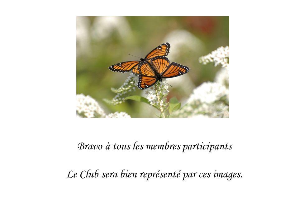 Bravo à tous les membres participants Le Club sera bien représenté par ces images.
