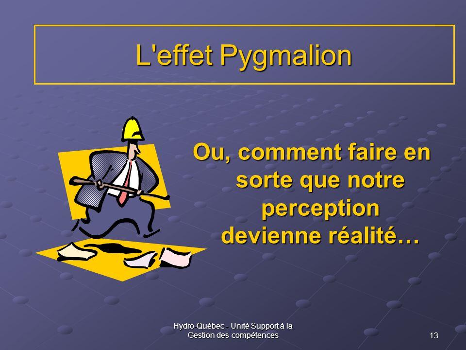 13 Hydro-Québec - Unité Support à la Gestion des compétences L'effet Pygmalion Ou, comment faire en sorte que notre perception devienne réalité…