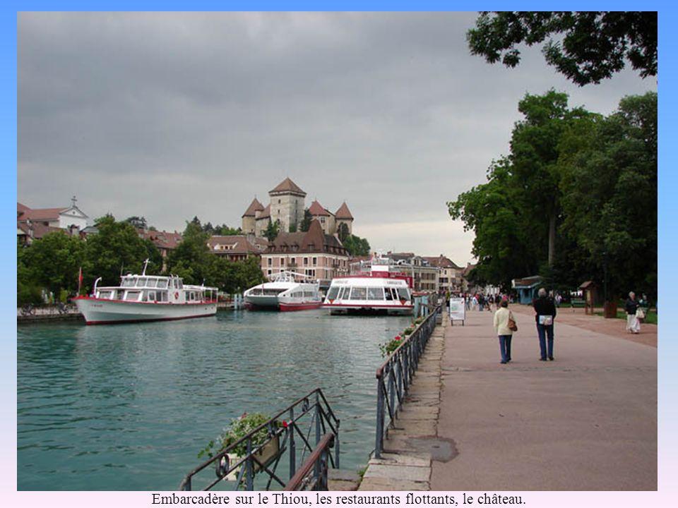 Le canal du Vassé, ses « vedettes » et le pont des amours.