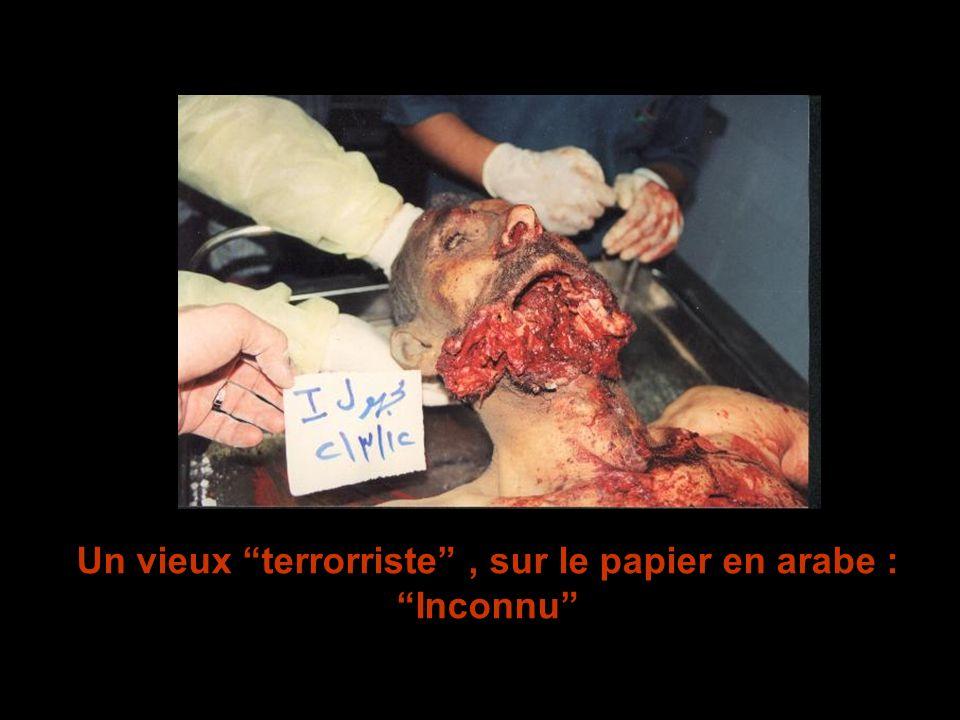 Un vieux terrorriste, sur le papier en arabe : Inconnu