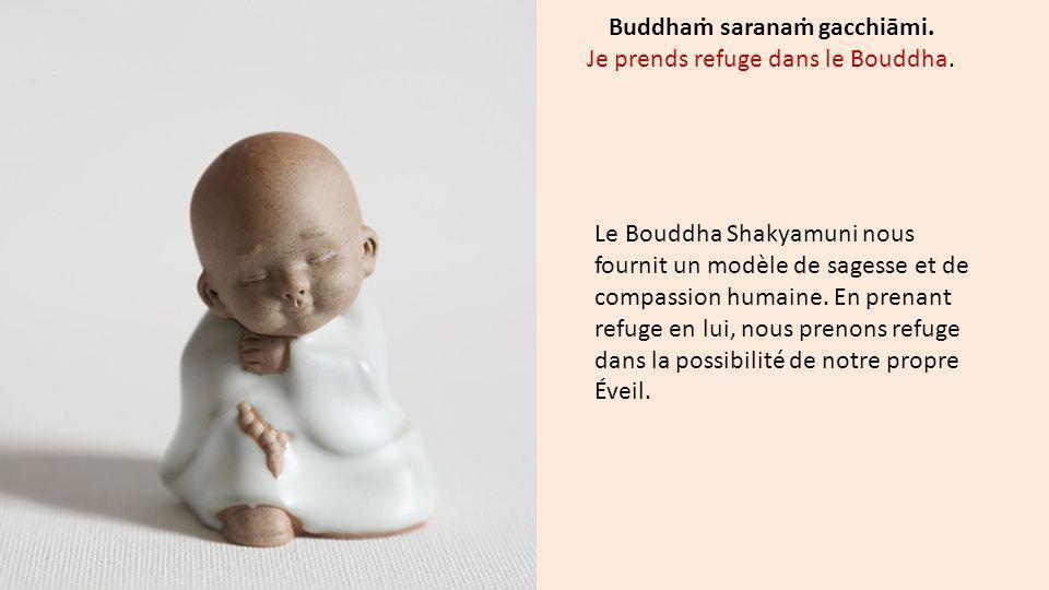 Le Bouddha Shakyamuni nous fournit un modèle de sagesse et de compassion humaine. En prenant refuge en lui, nous prenons refuge dans la possibilité de