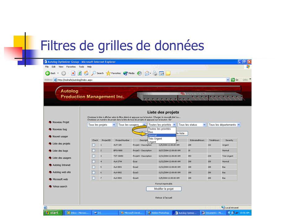 Filtres de grilles de données