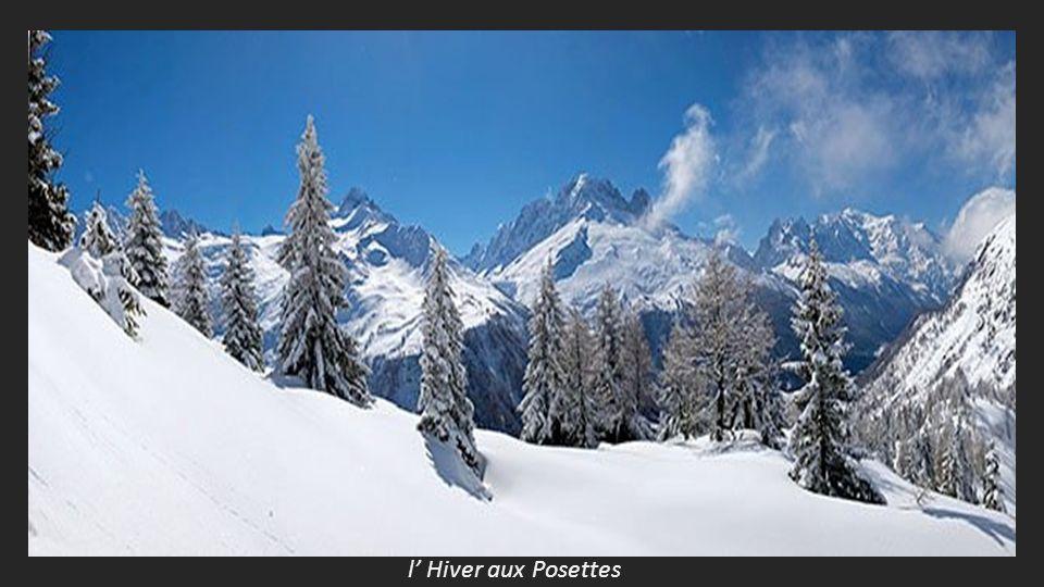 les trois Mont Blanc