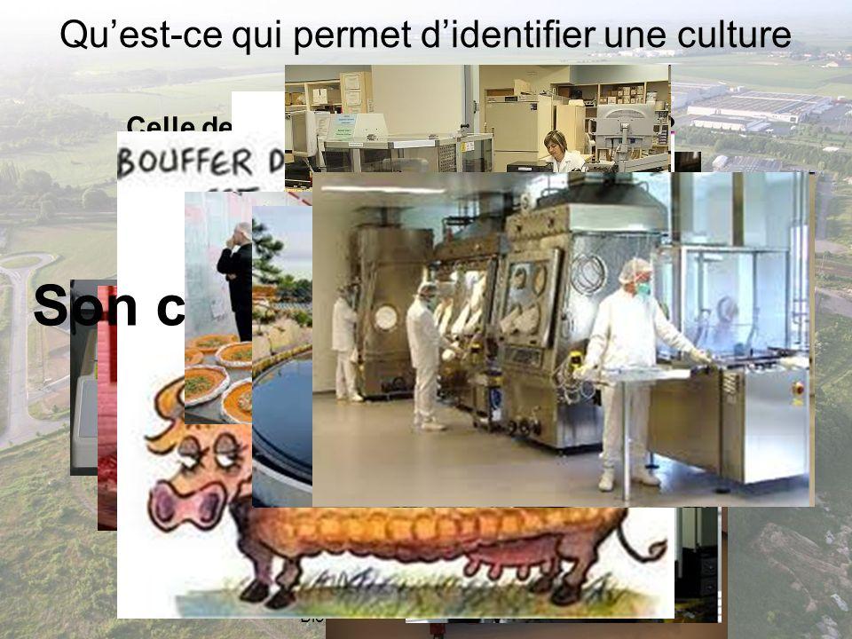 Rénovation de la filière STL - PNF Biotechnologies - 1 et 2 décembre 2011 Quest-ce qui permet didentifier une culture technologique .