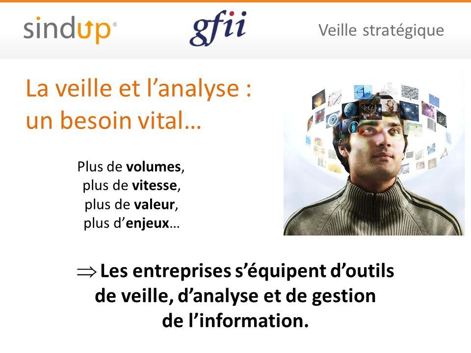Veille stratégique La veille et lanalyse : un besoin vital… Les entreprises séquipent doutils de veille, danalyse et de gestion de linformation.