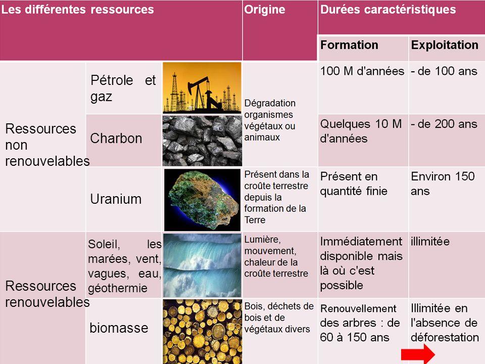 Soleil, les marées, vent, vagues, eau, géothermie Ressources non renouvelables biomasse Uranium Charbon Ressources renouvelables Pétrole et gaz