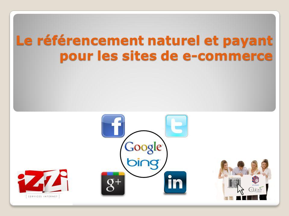 Le référencement naturel et payant pour les sites de e-commerce
