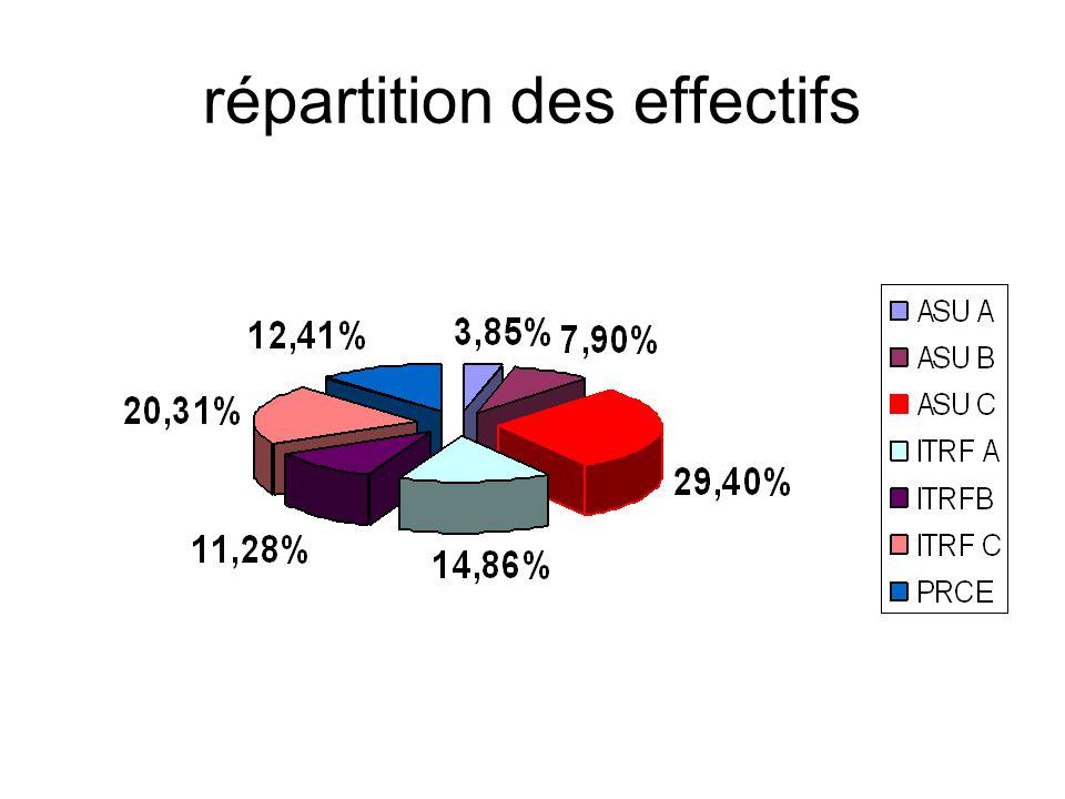 répartition des effectifs