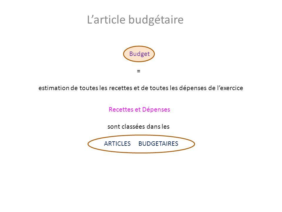 Larticle budgétaire Budget = estimation de toutes les recettes et de toutes les dépenses de lexercice Recettes et Dépenses sont classées dans les ARTICLES BUDGETAIRES