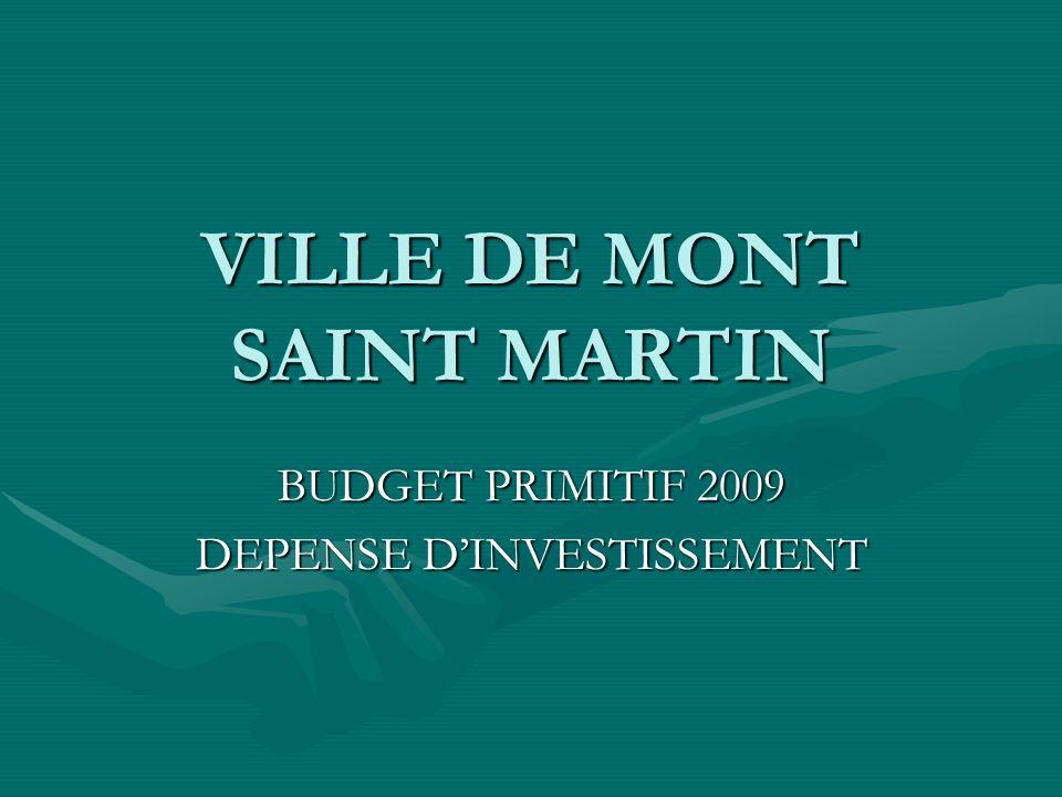 VILLE DE MONT SAINT MARTIN BUDGET PRIMITIF 2009 DEPENSE DINVESTISSEMENT