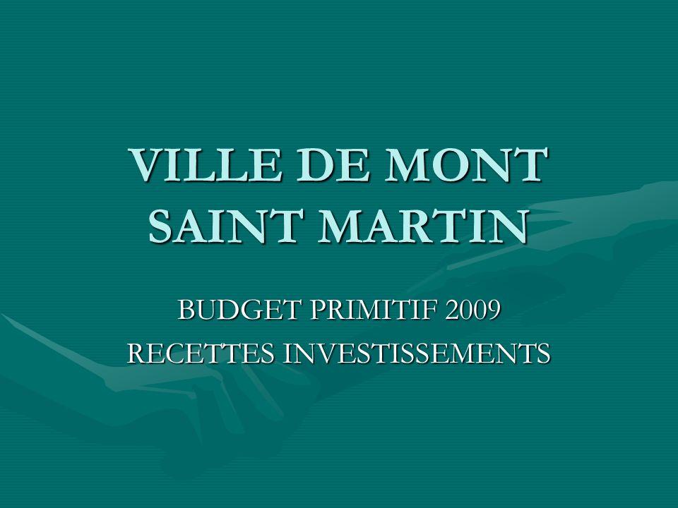 VILLE DE MONT SAINT MARTIN BUDGET PRIMITIF 2009 RECETTES INVESTISSEMENTS