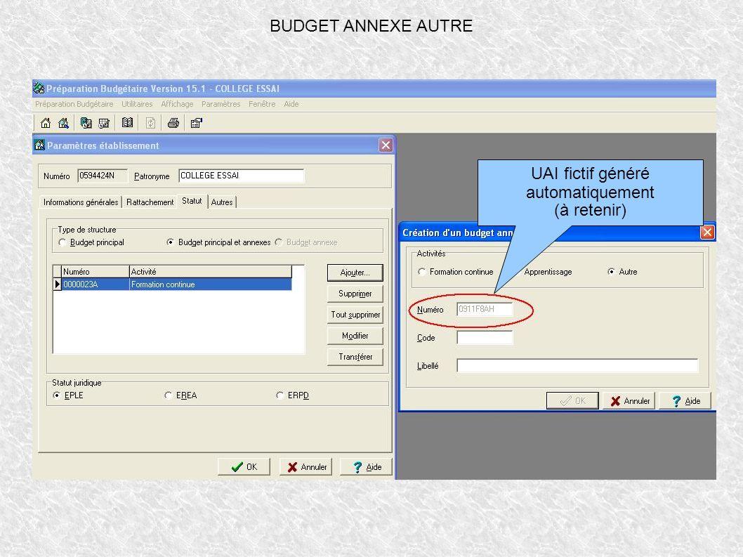 BUDGET ANNEXE AUTRE UAI fictif généré automatiquement (à retenir)