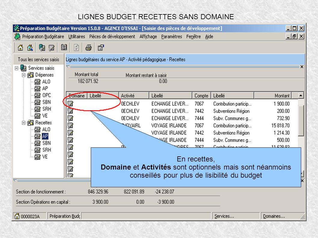 LIGNES BUDGET RECETTES SANS DOMAINE En recettes, Domaine et Activités sont optionnels mais sont néanmoins conseillés pour plus de lisibilité du budget
