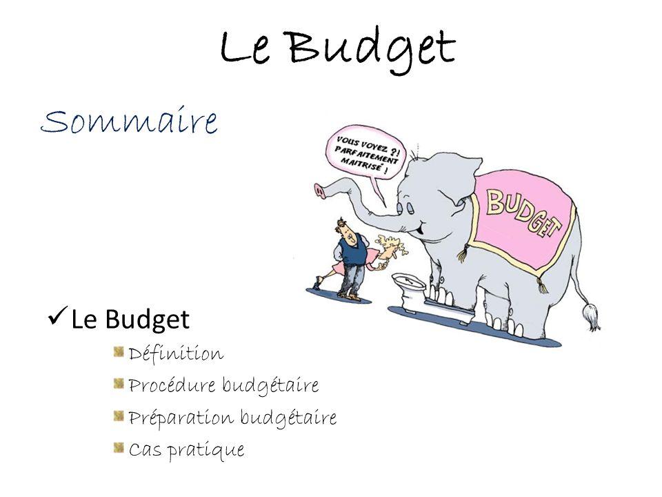 Sommaire Le Budget Définition Procédure budgétaire Préparation budgétaire Cas pratique Le Budget