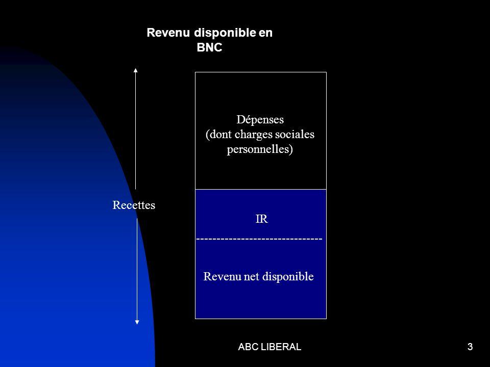 ABC LIBERAL3 Dépenses (dont charges sociales personnelles) Recettes ------------------------------- IR Revenu net disponible Revenu disponible en BNC
