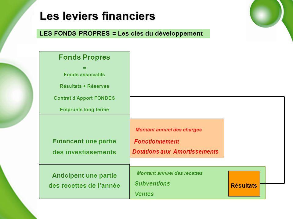 Les leviers financiers LES FONDS PROPRES = Les clés du développement Recettes de lannée Montant annuel des recettes Subventions + ventes Subventions V