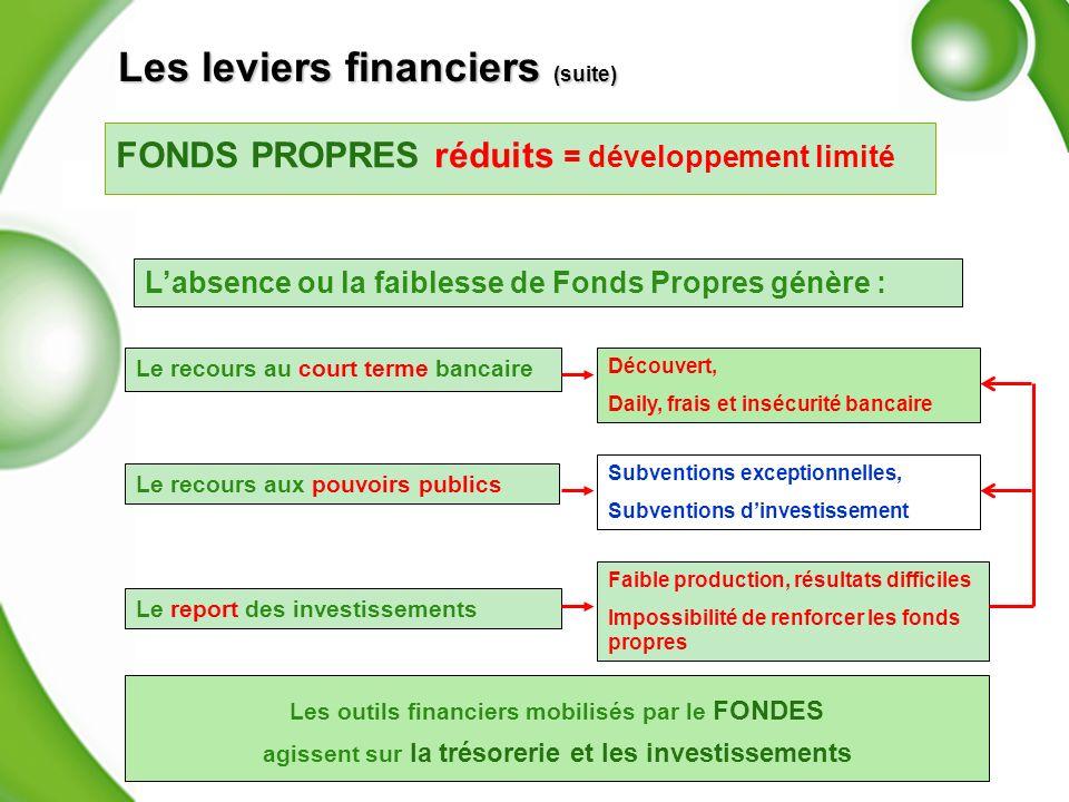 FONDS PROPRES réduits = développement limité Labsence ou la faiblesse de Fonds Propres génère : Le recours au court terme bancaire Le report des inves