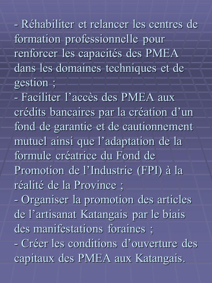 - Réhabiliter et relancer les centres de formation professionnelle pour renforcer les capacités des PMEA dans les domaines techniques et de gestion ; - Faciliter laccès des PMEA aux crédits bancaires par la création dun fond de garantie et de cautionnement mutuel ainsi que ladaptation de la formule créatrice du Fond de Promotion de lIndustrie (FPI) à la réalité de la Province ; - Organiser la promotion des articles de lartisanat Katangais par le biais des manifestations foraines ; - Créer les conditions douverture des capitaux des PMEA aux Katangais.
