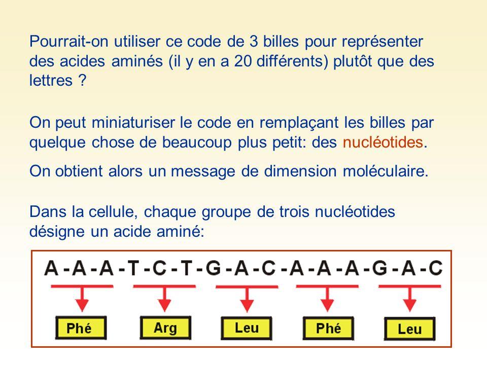 Pourrait-on utiliser ce code de 3 billes pour représenter des acides aminés (il y en a 20 différents) plutôt que des lettres ? On peut miniaturiser le
