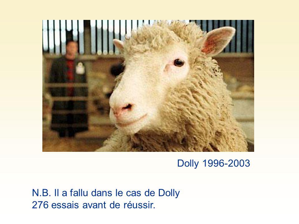 Dolly 1996-2003 N.B. Il a fallu dans le cas de Dolly 276 essais avant de réussir.