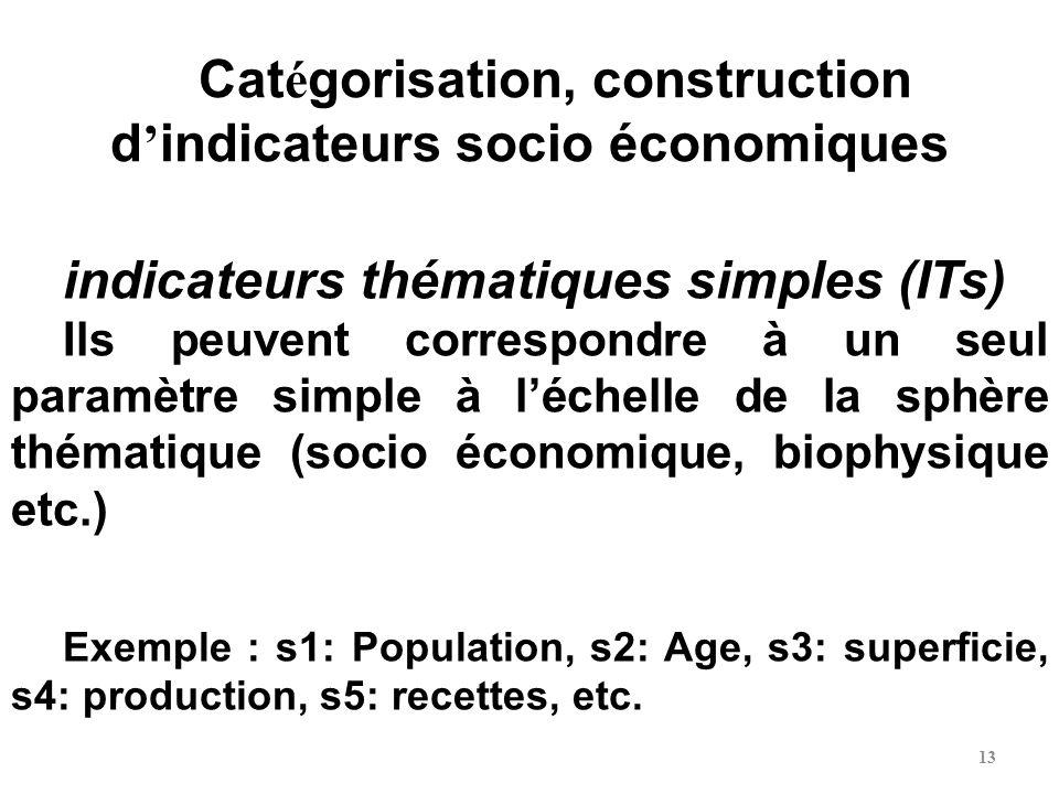 13 Cat é gorisation, construction d indicateurs socio économiques indicateurs thématiques simples (ITs) Ils peuvent correspondre à un seul paramètre s