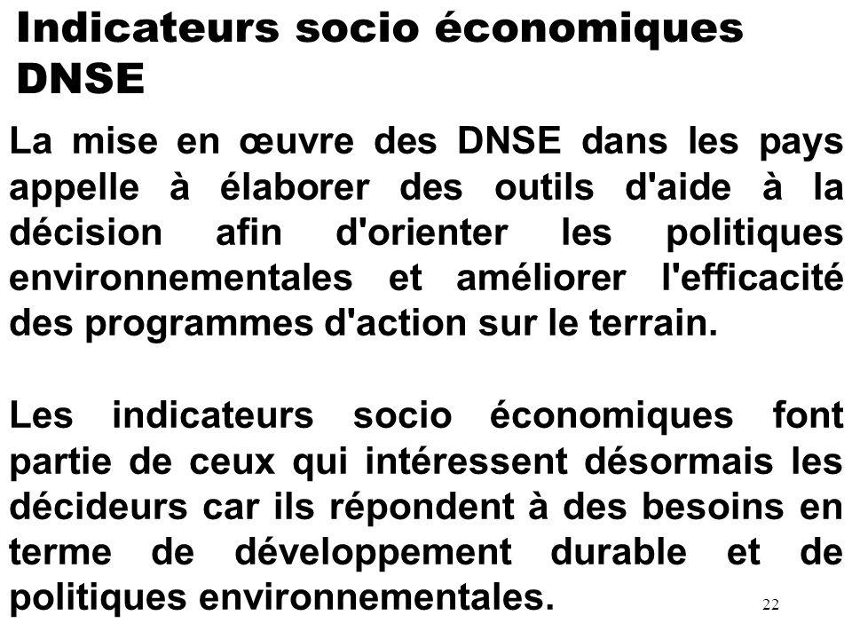 La mise en œuvre des DNSE dans les pays appelle à élaborer des outils d'aide à la décision afin d'orienter les politiques environnementales et amélior