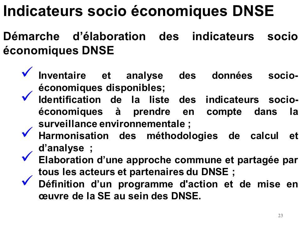 Démarche délaboration des indicateurs socio économiques DNSE Inventaire et analyse des données socio- économiques disponibles; Identification de la li