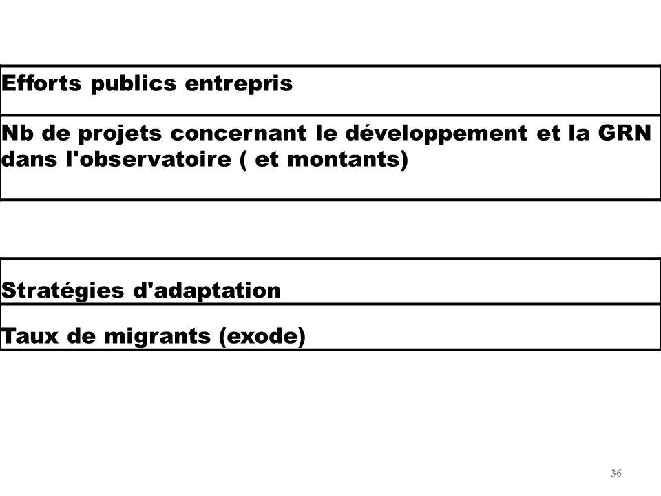 36 Efforts publics entrepris Nb de projets concernant le développement et la GRN dans l'observatoire ( et montants) Stratégies d'adaptation Taux de mi