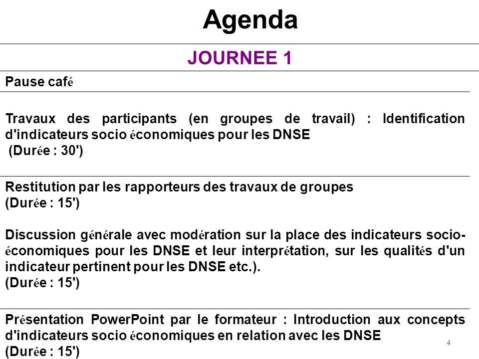 4 Agenda JOURNEE 1 Pause caf é Travaux des participants (en groupes de travail) : Identification d'indicateurs socio é conomiques pour les DNSE (Dur é