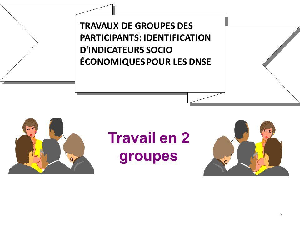 5 TRAVAUX DE GROUPES DES PARTICIPANTS: IDENTIFICATION D'INDICATEURS SOCIO ÉCONOMIQUES POUR LES DNSE Travail en 2 groupes