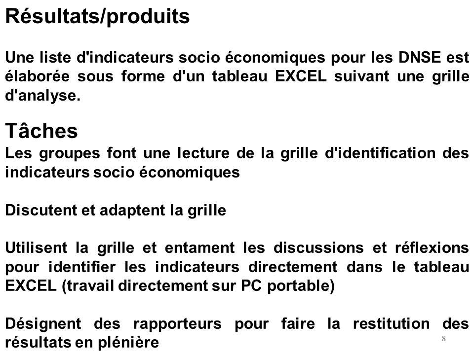 Résultats/produits Une liste d'indicateurs socio économiques pour les DNSE est élaborée sous forme d'un tableau EXCEL suivant une grille d'analyse. Tâ