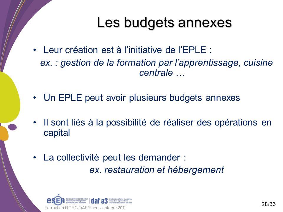 Les budgets annexes Leur création est à linitiative de lEPLE : ex. : gestion de la formation par lapprentissage, cuisine centrale … Un EPLE peut avoir