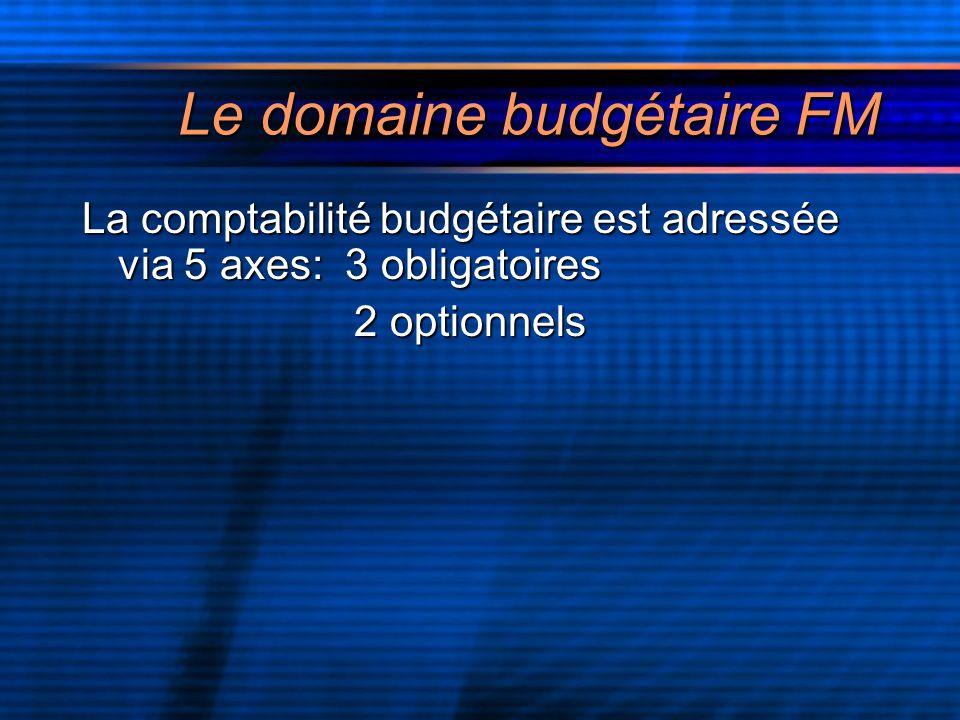 Le domaine budgétaire FM La comptabilité budgétaire est adressée via 5 axes: 3 obligatoires 2 optionnels 2 optionnels