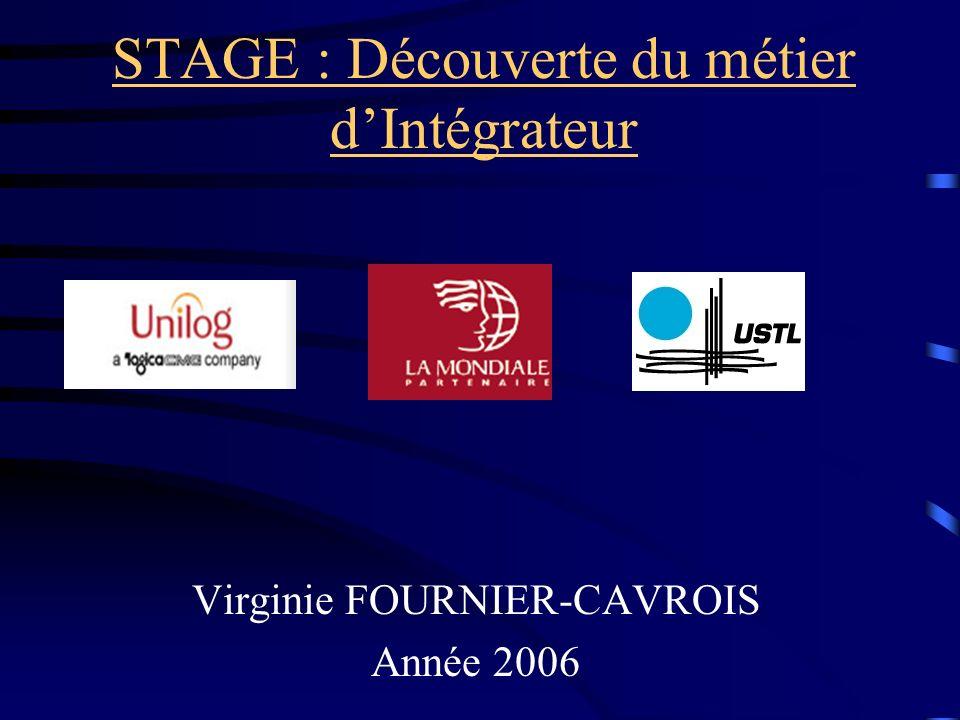 STAGE : Découverte du métier dIntégrateur Virginie FOURNIER-CAVROIS Année 2006