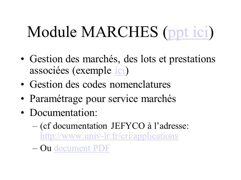 Module MARCHES (ppt ici)ppt ici Gestion des marchés, des lots et prestations associées (exemple ici)ici Gestion des codes nomenclatures Paramétrage pour service marchés Documentation: –(cf documentation JEFYCO à ladresse: http://www.univ-lr.fr/cri/applications http://www.univ-lr.fr/cri/applications –Ou document PDFdocument PDF