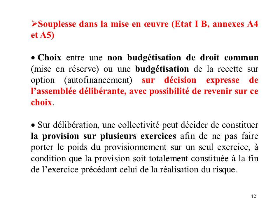42 Souplesse dans la mise en œuvre (Etat I B, annexes A4 et A5) Choix entre une non budgétisation de droit commun (mise en réserve) ou une budgétisati