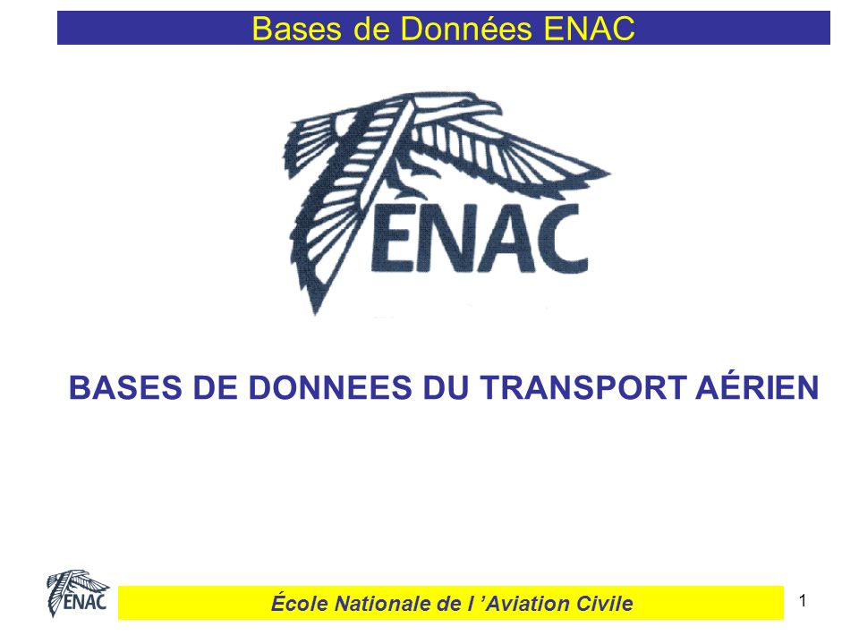 1 Bases de Données ENAC BASES DE DONNEES DU TRANSPORT AÉRIEN École Nationale de l Aviation Civile
